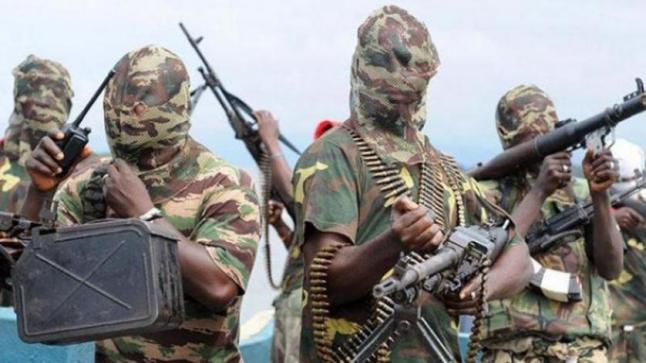 الجيش النيجيري يتعهد بالقضاء على بوكو حرام